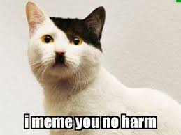 Meme Defintion - meme definition google search teaching diversity pinterest