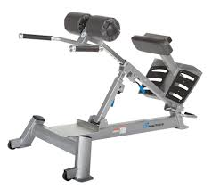 Nautilus Sit Up Bench Exercise Machines Alpha Fitness Solutions