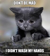 Dont Get Mad Meme - don t be mad i didn t wash my hands confession cat make a meme