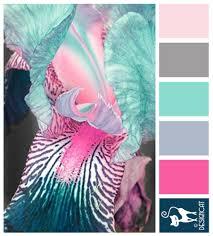 pink u0026 blue iris teal blue steel sky grey blush pink