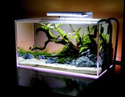 how to make decoration at home home decor how to make fish tank decorations at home home