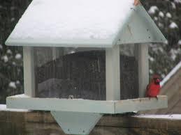 Backyard Wild Birds by Backyard Bird Feeders Decorative Backyard Wild Bird Feeders