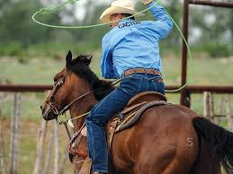Jake Barnes Team Roping 18 Best Roping Images On Pinterest Rodeo Rodeo Life And Ropes