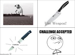 Challenge Accepted Meme Face - ragegenerator rage comic challenge accepted cat