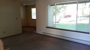 houston 2 bedroom apartments apartments for rent downtown chicago apartments that accept