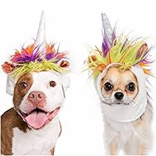 pet costumes unicorn dog costume and cat costume pet costumes by