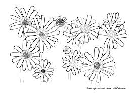coloring pages u2013 page 2 u2013 letmecolor
