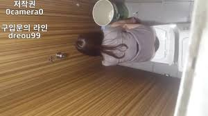 korean toilet voyeur|xHamster