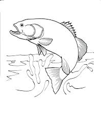 fish coloring pages print kids printable 4 u2013 vonsurroquen me