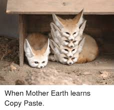 Meme Copy And Paste - when mother earth learns copy paste earth meme on esmemes com