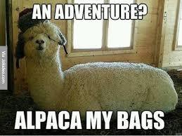 Adventure Meme - an adventure meme