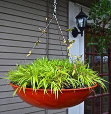home hyland garden design