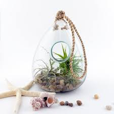 100 recycled glass hanging terrarium twig terrarium touch of