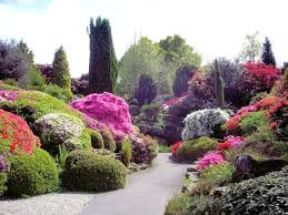 collection flower bed design ideas photos best image libraries