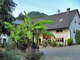 chambre d hote allemagne foret jardin maison d hôtes bettina badenweiler forêt allemagne