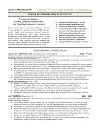 professional resume exles the top 4 executive resume exles written by a professional recruiter
