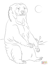 sitting sun bear coloring page free printable coloring pages