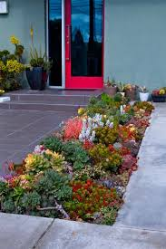 best 25 succulent landscaping ideas only on pinterest