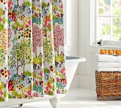 Shower Curtain Design Ideas Shower Curtains Dream Bathrooms Ideas
