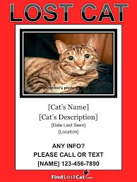 missing cat flyer template 8 psd lost dog flyer templates free
