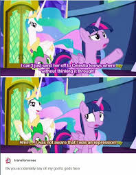 Princess Celestia Meme - i swear i laughed so hard at this moment that i m pretty sure my