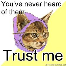 Meme Kitty - hipster kitty know your meme