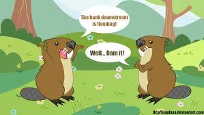 beaver puns by ocarinaplaya on deviantart