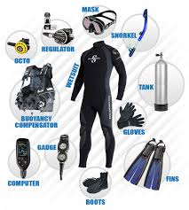 5 must have diving items
