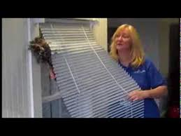 Best Way To Clean Dust Off Blinds Four Different Ways To Dust Horizontal Blinds By Castle Keepers Of
