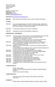 Sample Skill Based Resume by Sample Cv Language Skills