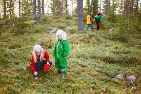 5 steps to raising a viking child