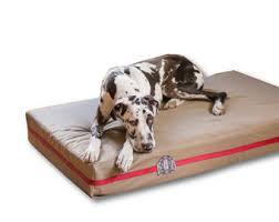 epic extra large dog beds for very big dogs by bigassdogcompany