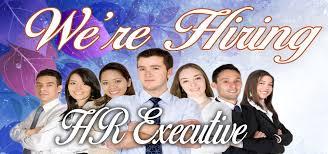 Executive Recruiters Job Description Hiring Hr Execuitves