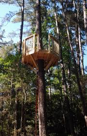 single tree treehouse tree fort ladder gate roof finale house