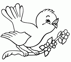 bird pictures to print kids coloring
