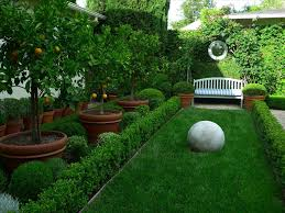 and backyard landscaping ideas front good trees to plant in front