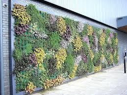 Garden Mural Ideas Garden Wall Shining Design Vertical Garden Design Ideas Best About