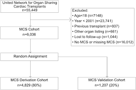 development of a transplantation risk index in patients with