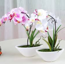 Wedding Decor Wholesale Orchid Wholesale Picture More Detailed Picture About Wedding