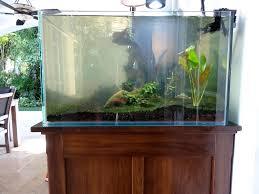Home Aquarium Aquarium Cabinet