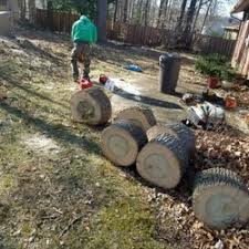 browns tree browns tree landscaping home improvements tree services