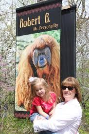 lueker munchkins u0026 play st louis day 3 zoo
