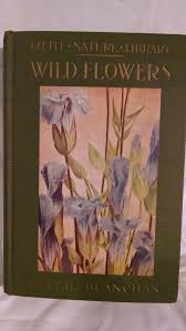 beautiful garden movie wild flowers worth knowing little nature library by neltje