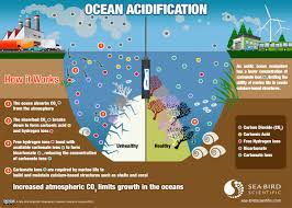 ph measure ocean water acidity with an oceanographic ph sensor