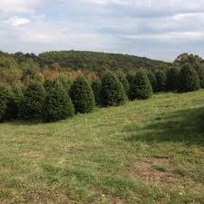 bonsall u0027s tree farm home facebook