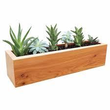 Modern Wood Planter by Details About Succulent Planter Rectangular Western Clear Oil