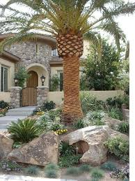 Tropical Landscaping Ideas by 106 Best Front Yard Florida Images On Pinterest Landscaping