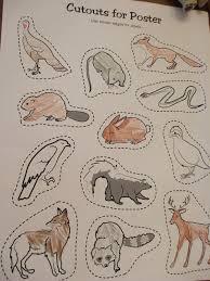 animal worksheet new 163 animal habitat worksheets for 3rd grade