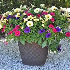 Pot Garden Ideas Flower Pot Garden Ideas Garden Flower Pot Landscaping Ideas