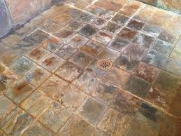tile new alpha tile tampa design decor interior amazing ideas on